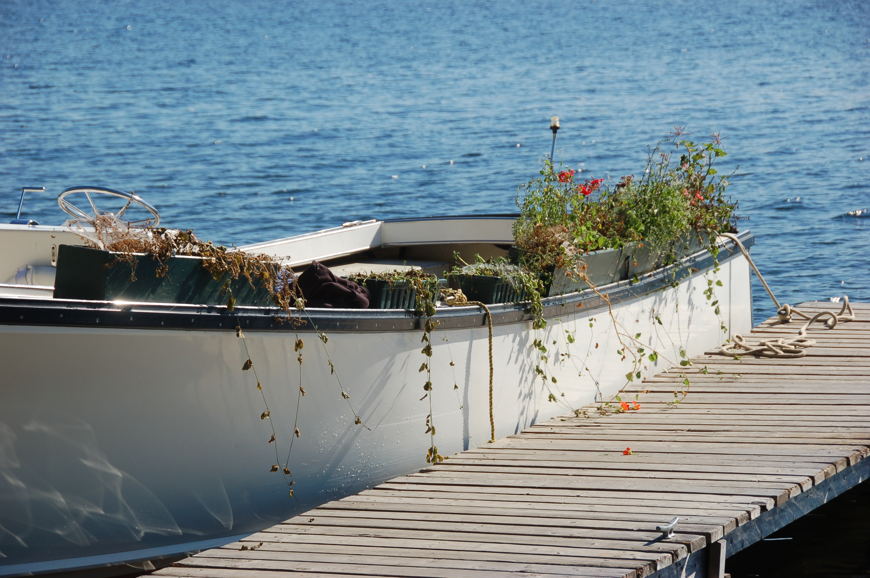 End of the line.  Flower boxes loaded on the KWS at the kitchen dock.  They will spend the winter in Brunswick and Emily will plant them again in the spring.